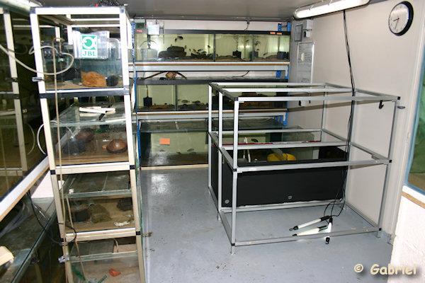 La fishroom en chantier