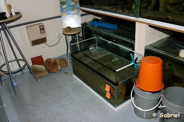 La fishroom en mode camping